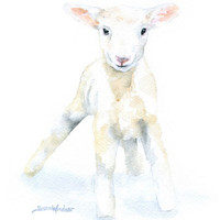 Watercolor Lamb - 4 x 6 - Giclee Reproduction Fine Art Print - Nursery Art - Sheep