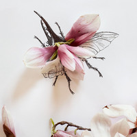 Magnolia Bug No. 4333