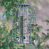 Nuttery Bird Feeders - Bird Seed Feeders - Extra Large Bird Feeder