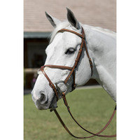 Pessoa Legacy Raised Padded Figure 8 Jumper Bridle