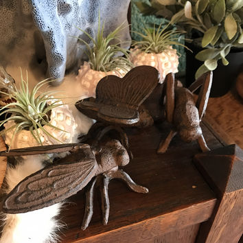 Metal Insect Paperweight