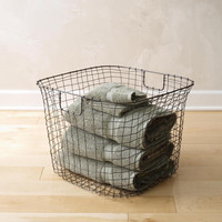 Cabo™ Wire Harvest Basket by Design Ideas