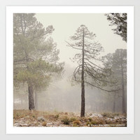 """Walking..."". Snowing in the mountains by Guido Montañés"