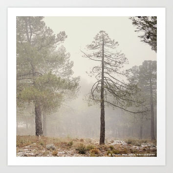 """""""Walking..."""". Snowing in the mountains by Guido Montañés"""