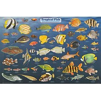 Tropical Fish Poster 24x36
