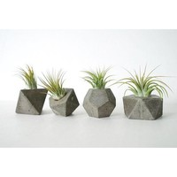 Rustic Concrete Geometric Party Favors - Set of 4