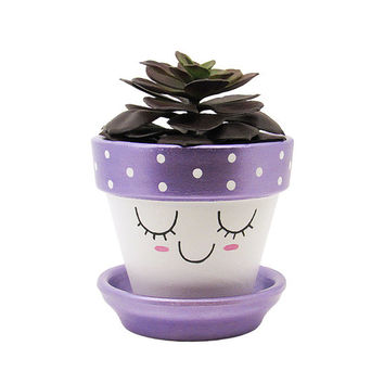 Succulent Planter, Cute Face Planter, Terracotta Pot, Air Plant Holder, Plant Pot, Flower Pot, Indoor Planter, Succulent Pot, Purple Planter