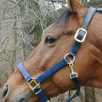Thornhill Chafeless Padded Breakaway Halter