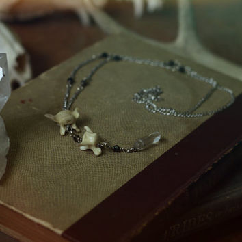 trickster // coyote tail bone rosary