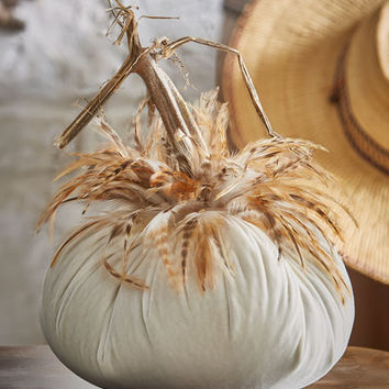 Hot Skwash Velvet Pumpkins with Feathers