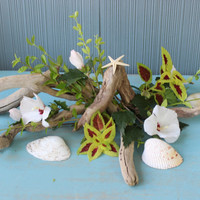 DIY Driftwood Branch Centerpiece , Collection of 4 Loose Pieces
