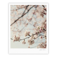 "Catherine McDonald ""Japanese Cherry Blossom"" Fine Art Gallery Print"