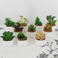 Artificial bonsai succulents Potted succulents Artificial plants home decoration