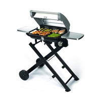 Full-Sized Portable Grill