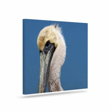 "Philip Brown ""Pelican"" Blue Photography Canvas Art"