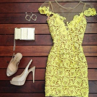 New Summer dress Sexy Woman Hollow out Lace see through look short sleeve dress-0628