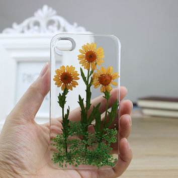 iphone 5 cases  iphone 5s case  Dried Dry  Chrysanthemum Pressed Flower Real Flower resin iphone 5c case  iphone 4s case iphone 4 cases