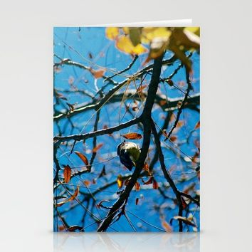 Fall Bird Stationery Cards by Lindsey Jennings Photography