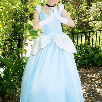 Cinderella Gown Adult Costume Version