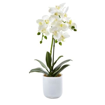 Silk Flowers -Phalaenopsis In Frosted Glass Arrangement Artificial Plant