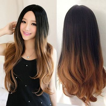 Two Tone Ombre Black To Brown Natural Straight Wig