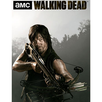 The Walking Dead Daryl Attack Mode Poster