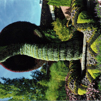 Postcard, Botanical Gardens, Snake, Garden, Grass, Sculpture, Post Office, Mail, Animals, Postcrossing, Letter, Penpal, Writing, Post, Photo