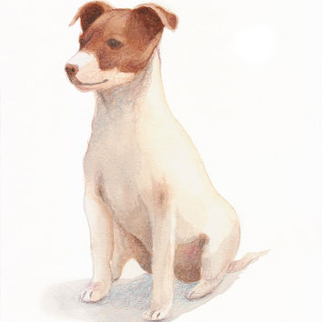 "JACK RUSSELL watercolor- 10""x8"" - Watercolor animals- custom portrait - watercolor paintings original - dog cat animal pets - affordable art"