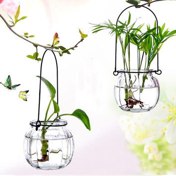 Beautiful Hanging Crystal Clear Glass Vase