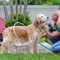Woof Washer 360 pet dog Gently clean