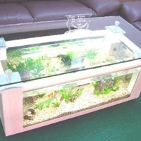 Rectangular Coffee Table Aquarium with pump, light, filter and completely fish ready