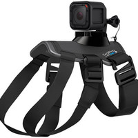 GoPro Fetch Dog Harness - E228641 — QVC.com