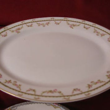 Theodore Haviland Limoges  France from 1892 to 1907and the mark is T75B Platter