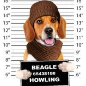 beagle howling t-shirt mens t-shirts dogs mugshot t-shirts mug short dog pets