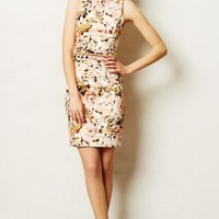 Roseblush Pencil Dress by Ladakh Red Motif
