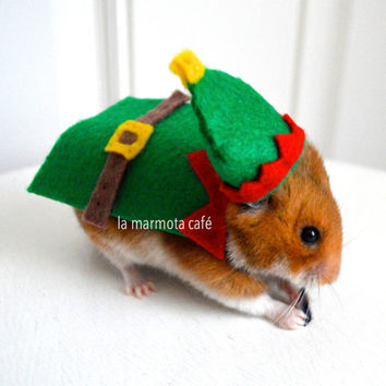 Hamster Christmas elf costume. Chinchilla / hamster / guinea pig / rabbit pet costumes by la Marmota Café.