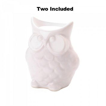Set of 2 Friendly Owl Oil Warmers