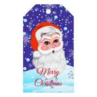"Cute ""Santa Claus & Snowfall"" Merry Christmas Gift Tags"