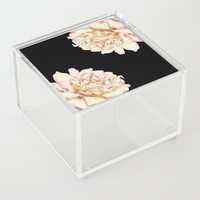 Roses - Lights the Dark Acrylic Box by drawingsbylam