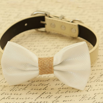 White dog bow tie collar, Country Rustic wedding, white wedding ideas