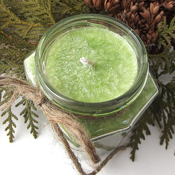 Christmas in the U.P. Palm Candle -- Hand Poured -- Natural Wax Candle -- 9 ounce Jar