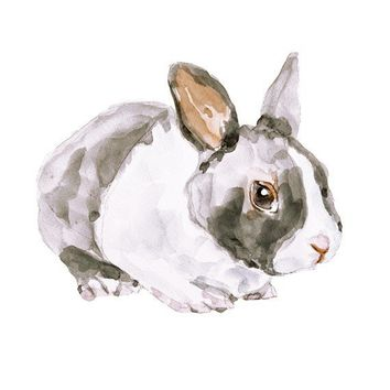 BUNNYOriginal watercolor painting 85x11 by fairysomnia on Etsy