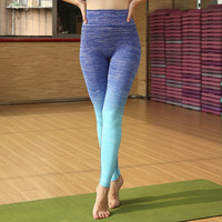 Yoga Pants Quick Dry Sportswear Gym Stylish Cropped Pants [4920580420]