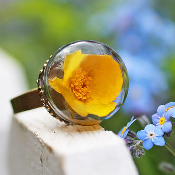 Real buttercup ring,  real flower jewellery , snowglobe ring , nature jewellery , big statement ring , mustard yellow , terrarium ring