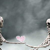 Take it, its yours 3 - FREE SHIPPING - Skeletons Love Pink Red Heart Gray Green Bones Lovers Surreal Creepy Art White Still Life