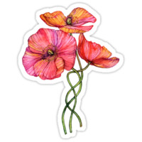 Peach & Pink Poppy Tangle