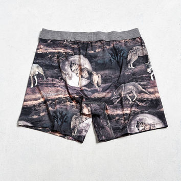 Desert Wolf Boxer Brief | Urban Outfitters