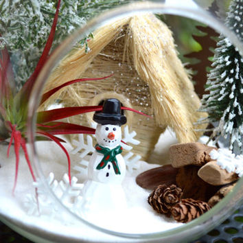 Winter Terrarium Kit ~ Rustic Wintery Cabin ~ Snow White Sand with Snowman ~ Live Air plant ~ Wood Pile ~ Glass Globe ~ Winter Decor ~ Gift