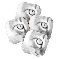 Bree Madden Cats Eye Coaster Set