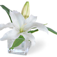 Casablanca Lily White Flower Arrangement - Traditional - Artificial Flowers - by Winward Designs